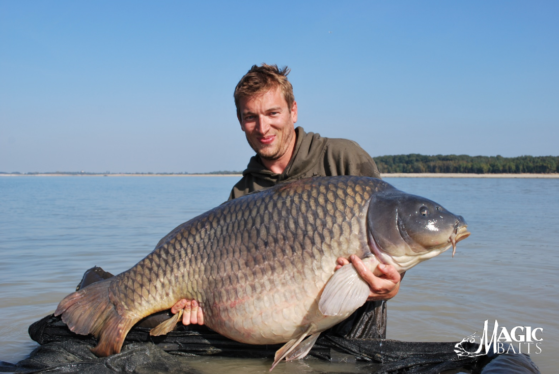 Filip-Schaumans-Moby-Dick-38Kgs-1